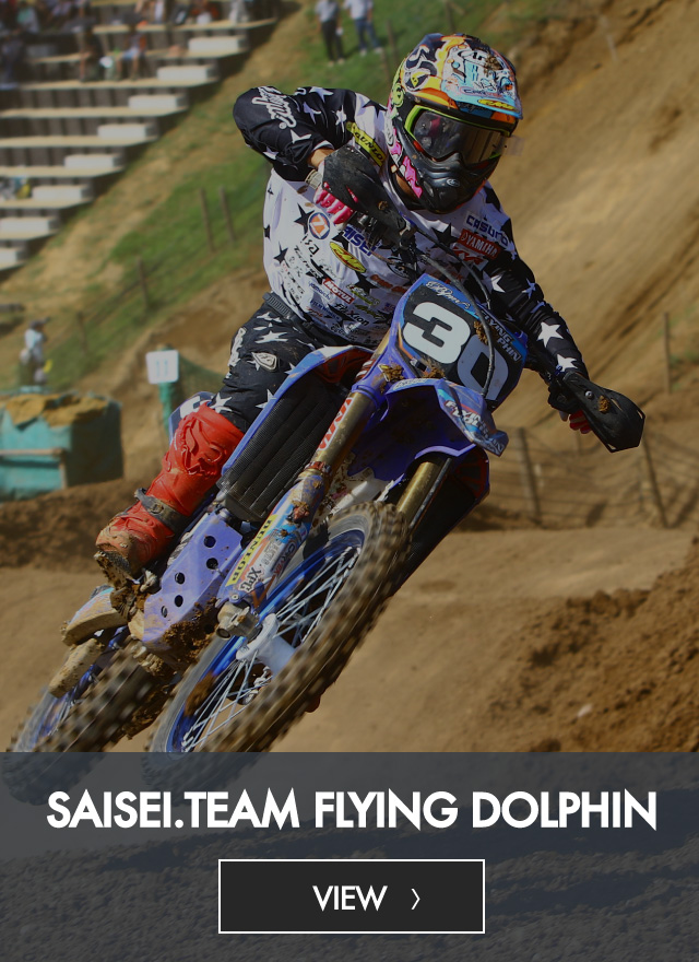 SAISEI.TEAM FLYING DOLPHIN